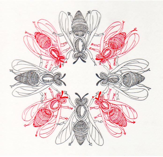 heloise-tunstall-behrens-the-swarm-logo