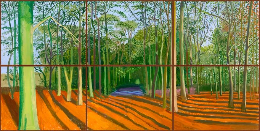 woldgate-woods-6-9-november-2006-2006