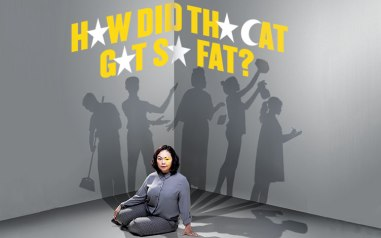 how-did-the-cat-get-so-fat-01
