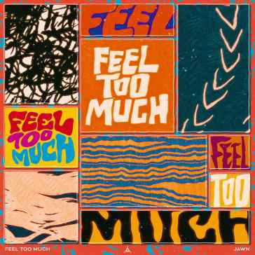 Feel Too Much - Single Artwork (low res)